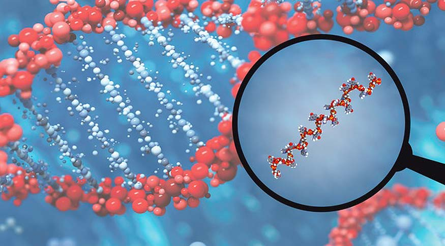 Global miRNA Tools and Services Market with (Covid-19) Impact Analysis:  Growth, Latest Trend Analysis and Forecast 2025 – Galus Australis