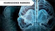 Neuroscience Markers